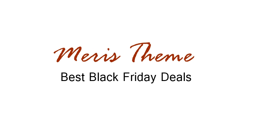 Meris Theme Black friday